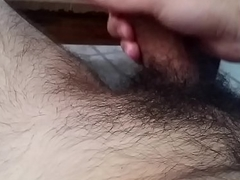 Hairy Raccoon Paws His Junk with an increment of Talks (PART 1)